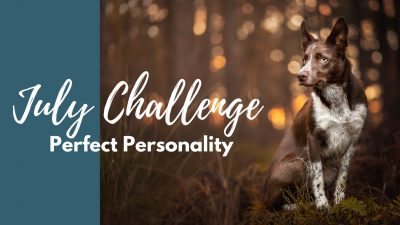 Perfect Personality: July Photography Challenge!