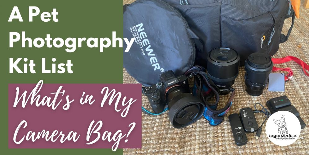 A Pet Photography Kit List - What's in My Bag?