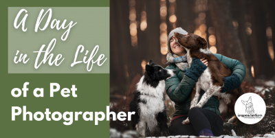 Inspawration Photography School: A Day in the Life of a Pet Photographer