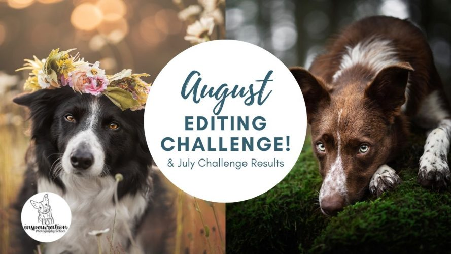 August Editing Challenge & July Results!